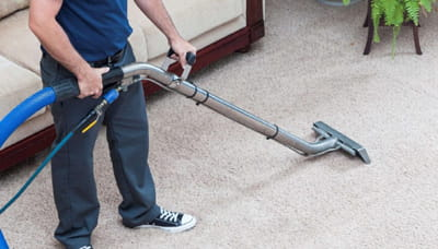 carpet cleaning ny